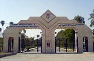 دانشگاه رامین