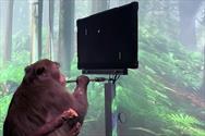 میمونی که با قدرت ذهن خود پینگ پنگ بازی می کند!