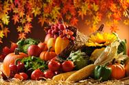 نکات مهم تغذیه در فصل پاییز